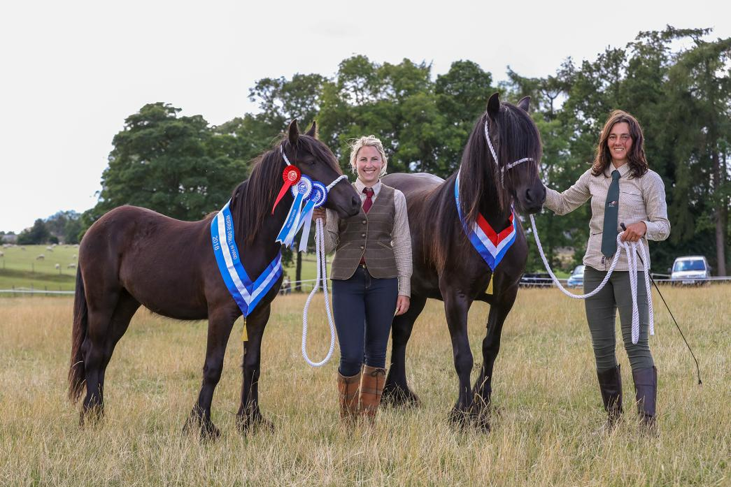 JUST CHAMPION: Rachel Cook and Alison Eccles show the overall in-hand champion and reserve, Westwick Kate and Westwick Daisy Mae  Picture: Kevin Owens/Digital Works