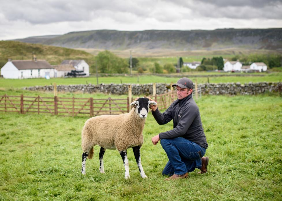 Robert Hutchinson, of Bowes, with the champion sheep