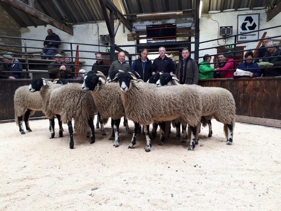 WINNING WAYS: The champions at Middleton-in-Teesdale's annual prize show and sale of 6,100 Swaledale Gimmer Lambs