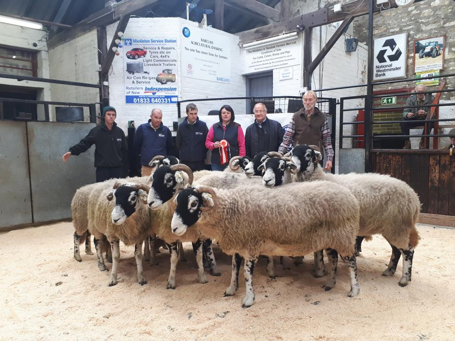 CHAMPION: The champion pen of Swaledale of ten ewes shown by the Raines, of Stanhope Gate Farm