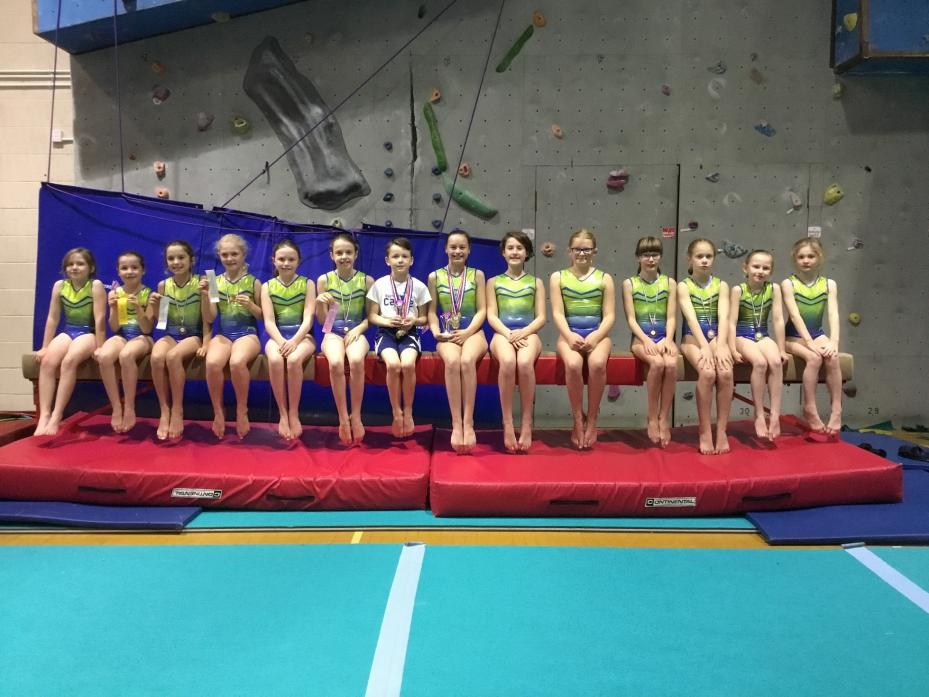 WELL DONE: Members of Barnard Castle Gymnastics Club who took part in the competition