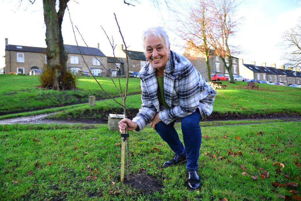 TAKING ROOT: Middleton-in-Bloom organiser Pam Phillips with one of the crabapple trees that have been planted to help wildlife in the village