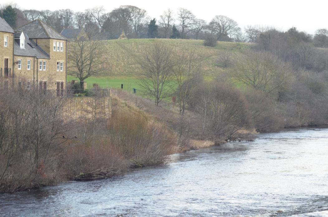 CLEARING OUT: Plans for a riverside walk have been dropped, but a scheme to open up the view of the river is being planned by Barnard Castle Town Council and the Durham Wildlife Trust