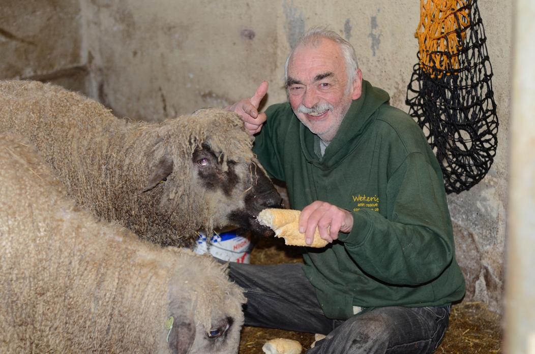 I WANT YOU: Wetheriggs owner Terry Bowes wants more volunteers to help out at his animal sanctuary
