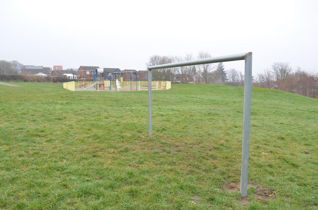 CHILD'S PLAY: The goals installed at Green Lane play area