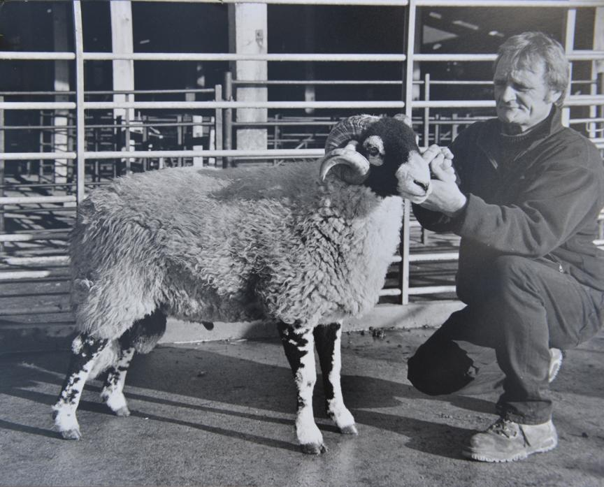 FINE ANIMAL: Ken Brown with one of his prize tups at an annual sale. Mr Brown sold one of his Swaledale tups for £20,000 shortly after the foot and mouth outbreak