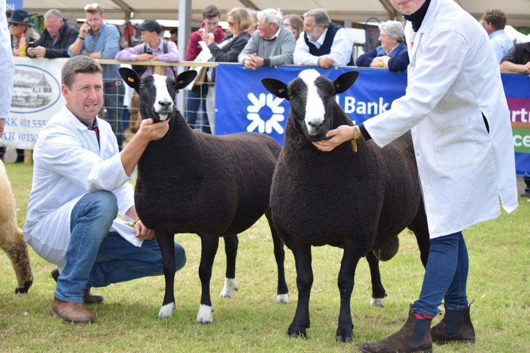 FINE BREED: Peter Addison, left, with the reserve champion and Neil Millar with the champion