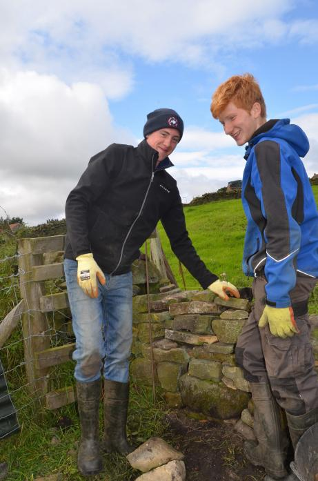 NEW SKILLS: Matthew Davison and James Richardson said there are miles of walls to keep them busy at their respective homes