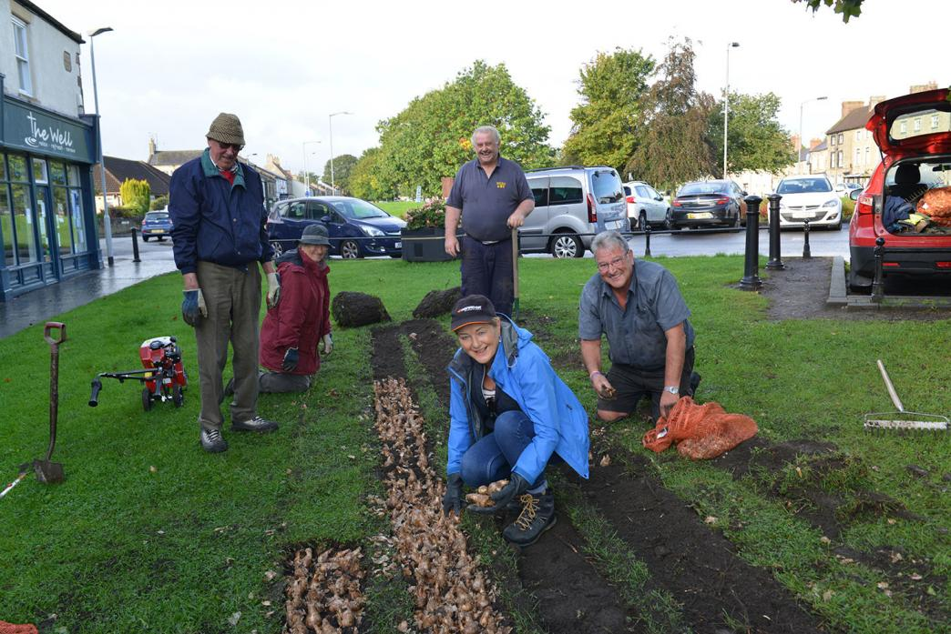HARD AT WORL: Alf and Audrey Beck, Cllr Karen Bolton, Cllr Neil Simpson and Cllr Chris Smith aim to plant 12,000 bulbs around West Auckland in the coming months 		             TM pic