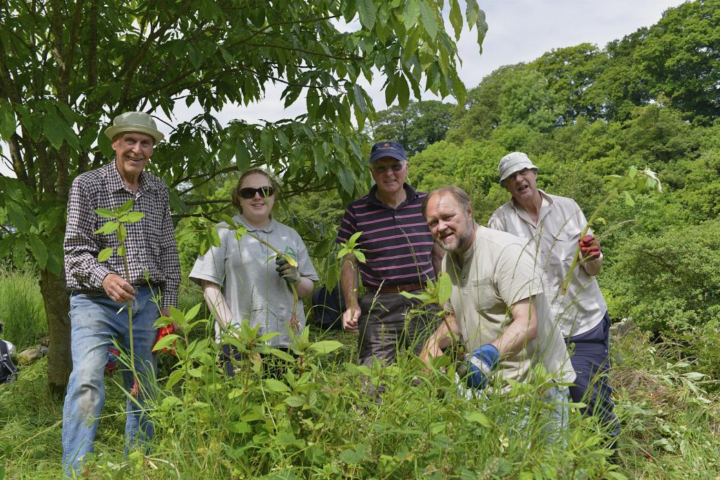 STOPPING THE SPREAD: Balsam bashing was a regular activity undertaken by volunteers during the Heart of Teesdale Landscape Partnership project
