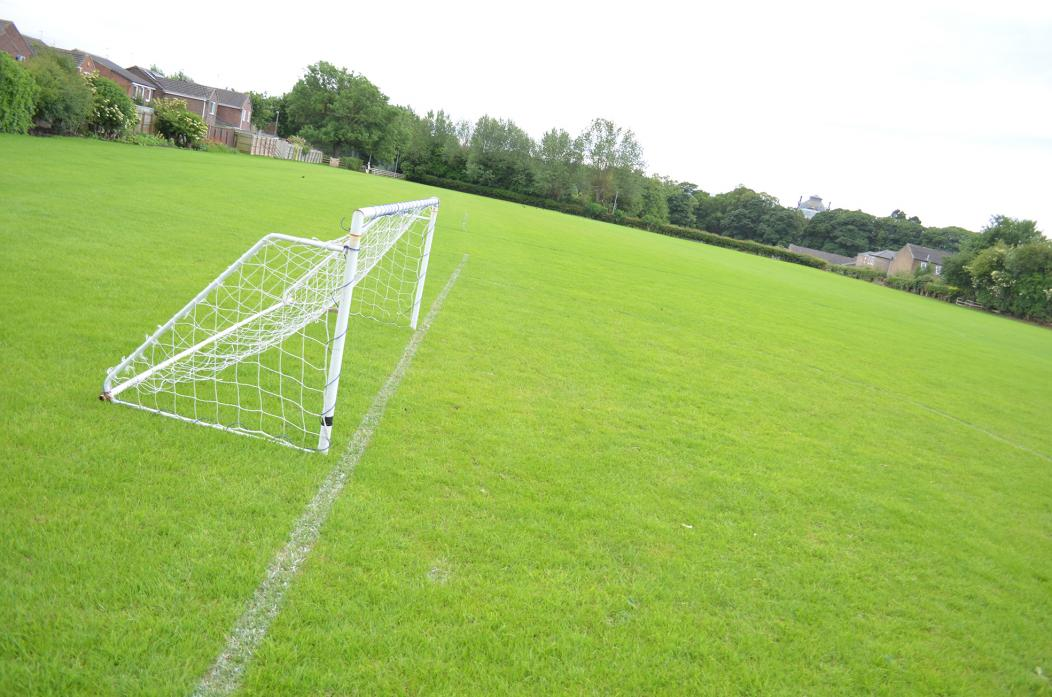 LOOKING A PICTURE: The Bowes FC ground at Tensfield. The club has received £2,500 to carry out further improvements to the playing surface