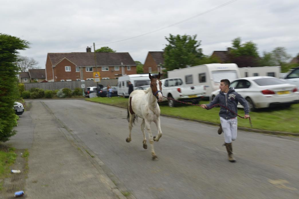 Travellers in Startforth in 2014 - there has been no major trespass since then except at Harmire
