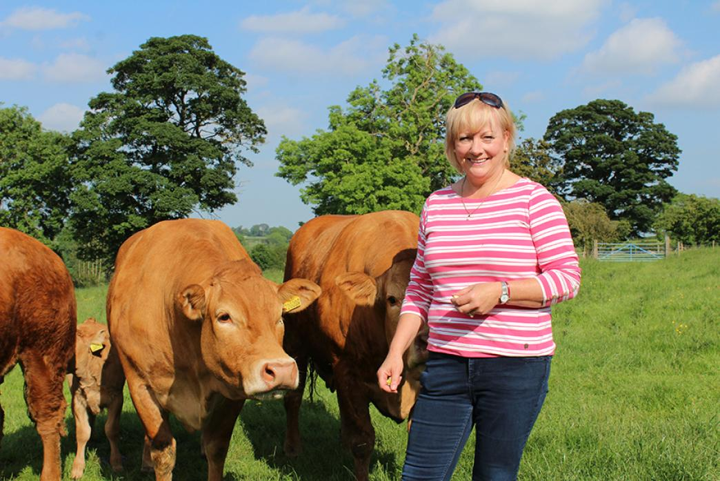 QUALITY COUNTS: Judith Howson, who is committed to carrying on the good work started by her parents when they established their small, but high quality, herd of Limousins