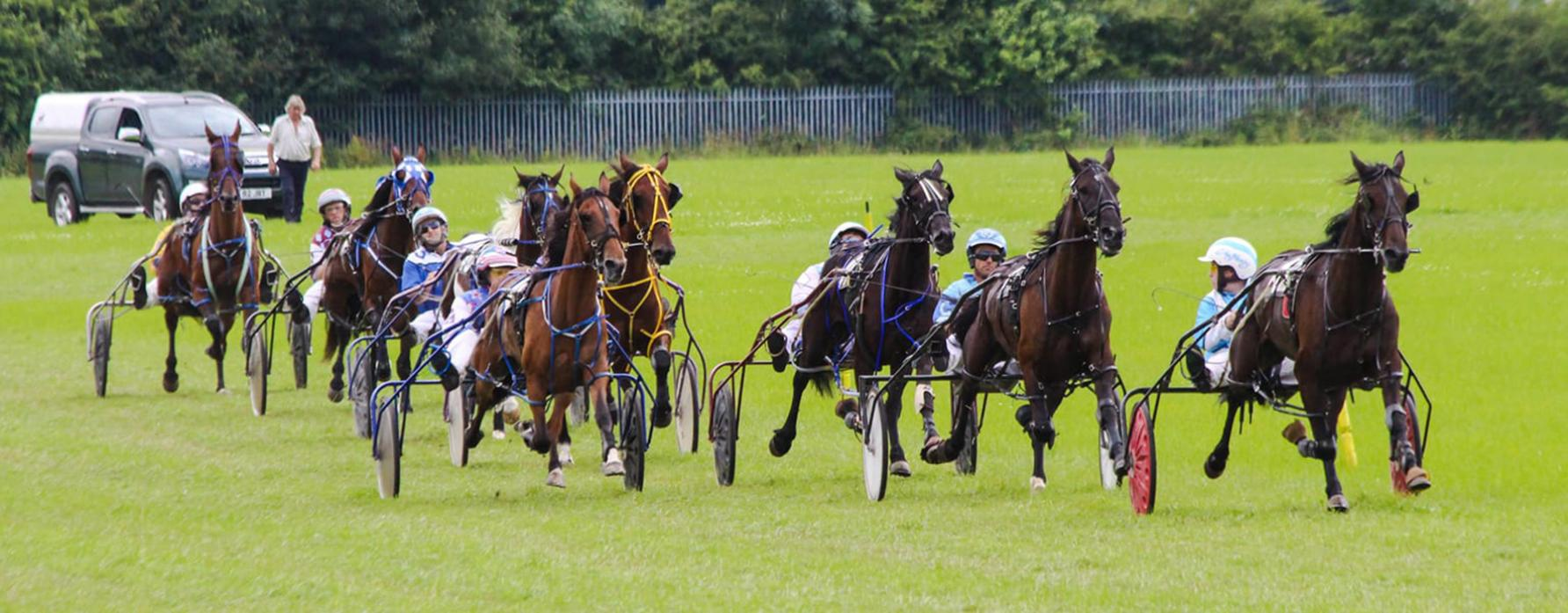 RACING AHEAD: Evenwood's John Henry Nicholson, from Evenwood, leads the way in one of last year's harness races at Binchester