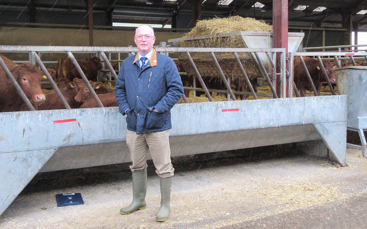Switching to maize silage may pay off