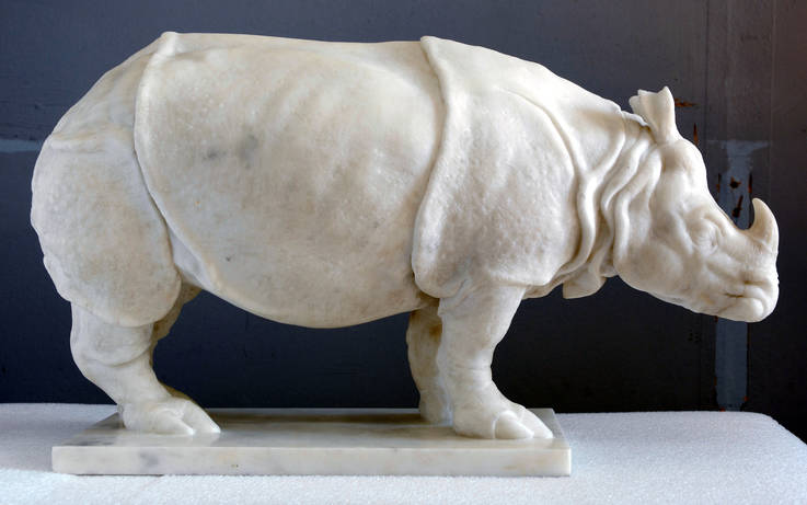 Marble marvel tells the story of a forgotten rhino