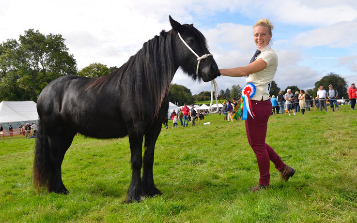 Horses and donkeys entered into Eggleston Show must be vaccinated against equine flu