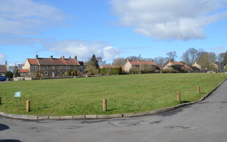 Wildflower meadows plans for Whorlton village green dropped after objections from residents