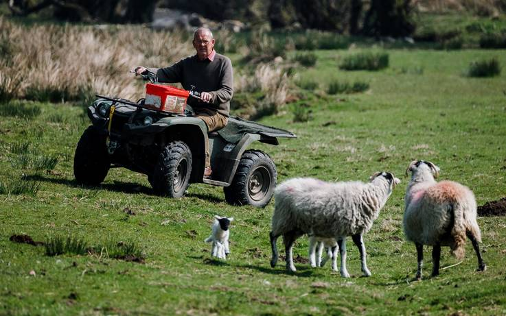 Nature and farming in the uplands